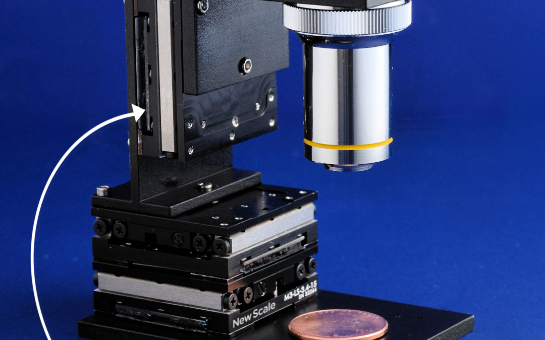 Smart stage photo with microscope objective